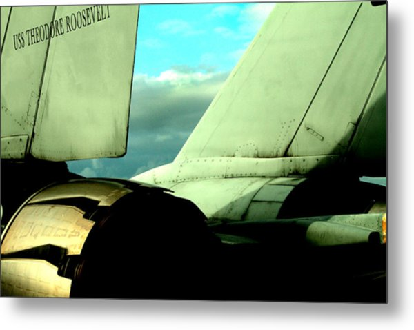 F-14 Tomcat Metal Print by Maxwell Amaro
