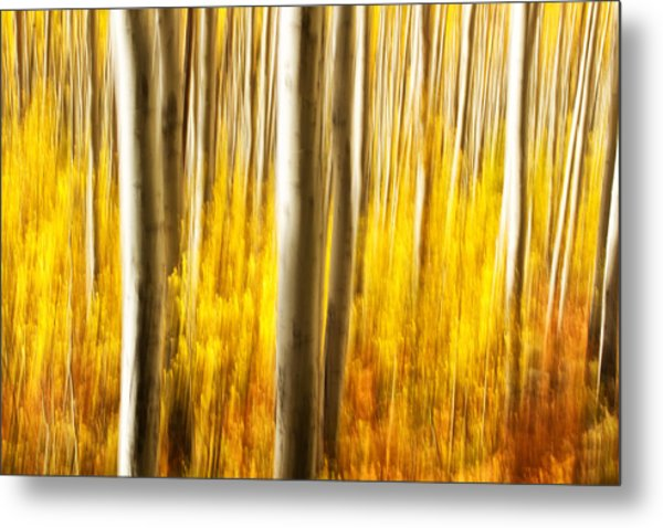 Fall Abstract Metal Print