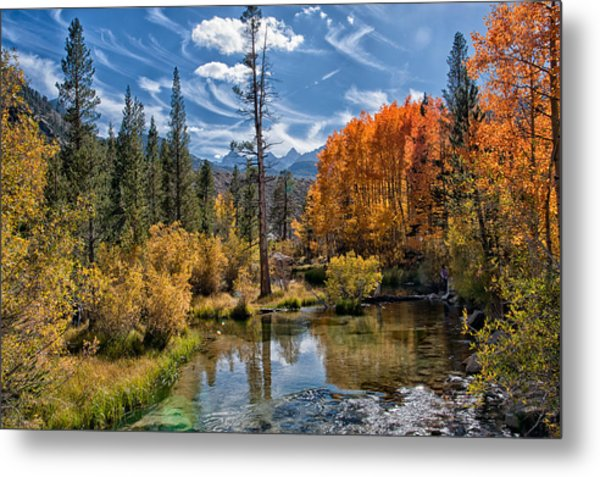 Fall At Bishop Creek Metal Print