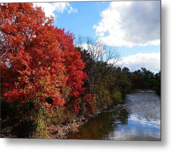 Fall At The Credit River Metal Print