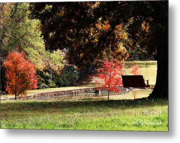 Fall Colors Metal Print by Jinx Farmer