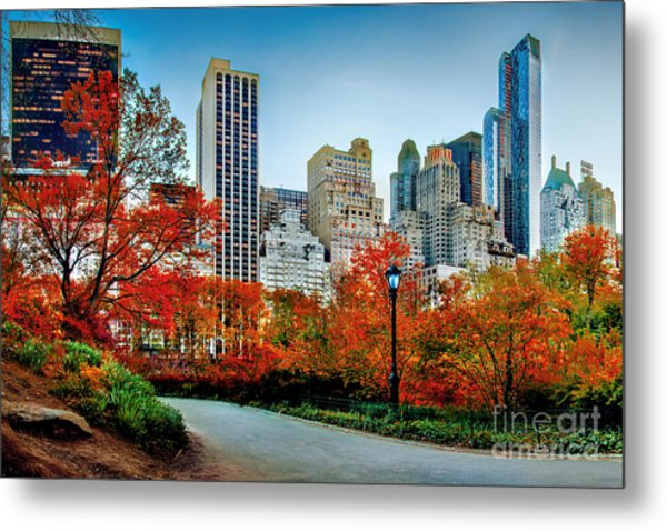 Fall In Central Park Metal Print