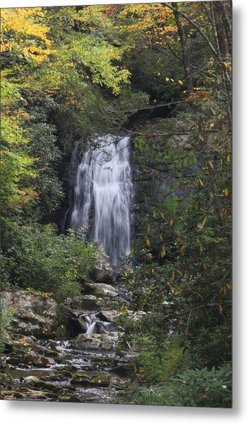 Fall In The Smokies Metal Print