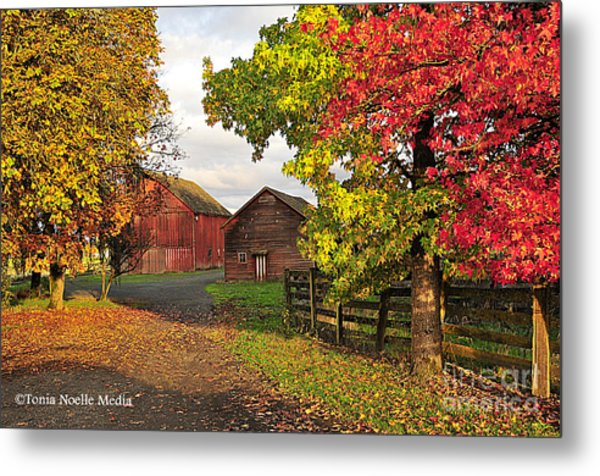 Fall On A Farm In Oregon Metal Print