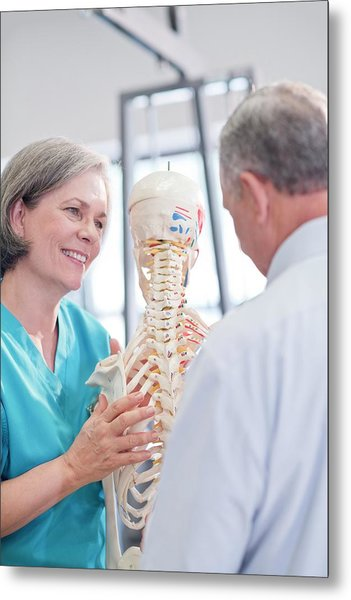 Female Chiropractor Showing Anatomical Model Metal Print by Science Photo Library