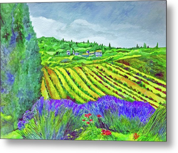 Fields At Dievole Metal Print
