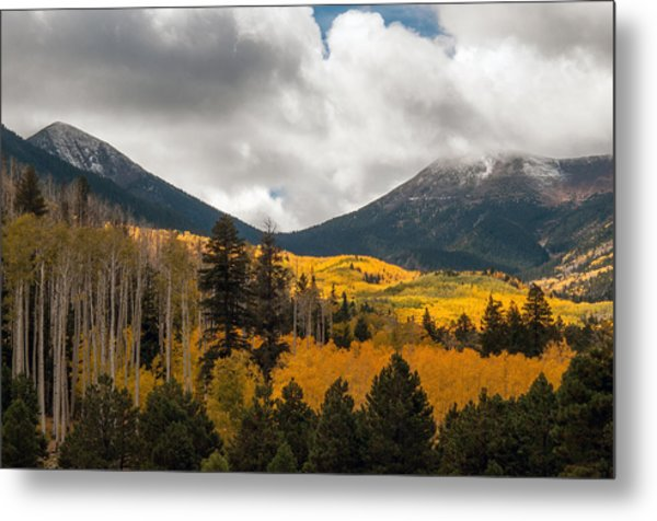 Flagstaff Fall Color Metal Print