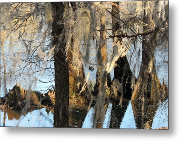 Flint River 36 Metal Print