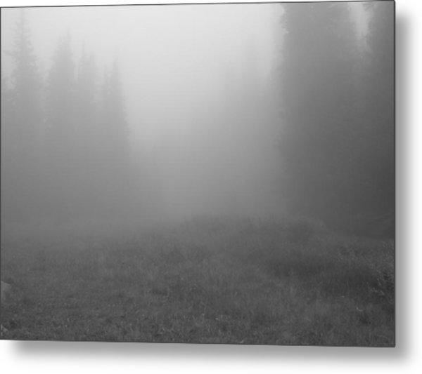 Fog In Tileston Meadow Metal Print