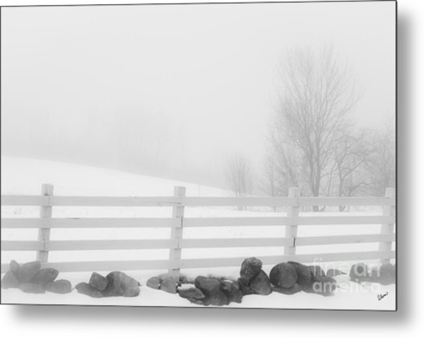 Foggy Winters Day Metal Print