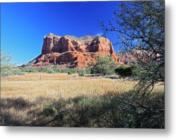 From The Shadows Metal Print