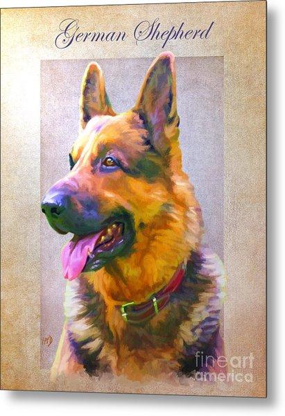 German Shepherd Portrait Metal Print by Iain McDonald