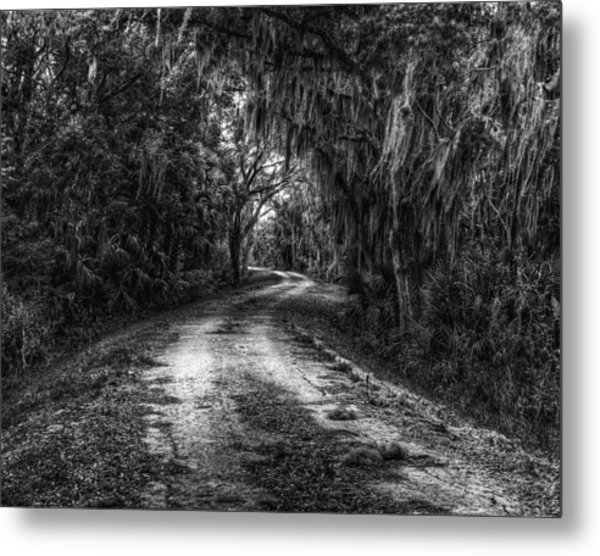 Going Home Metal Print by David Mcchesney