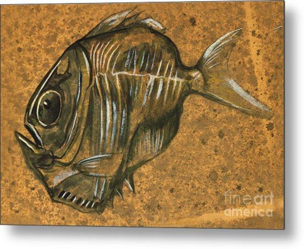 Hatchet Fish Metal Print