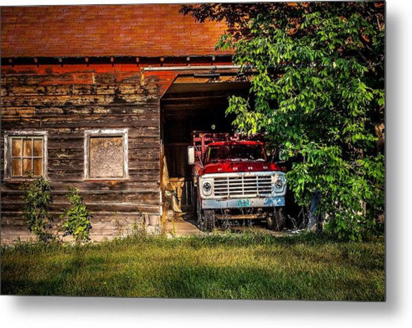 Hiding Out Metal Print