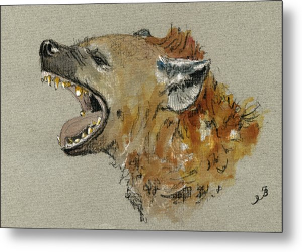 Hyena Head Metal Print