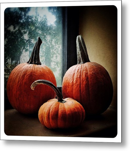 I Love Pumpkins Metal Print