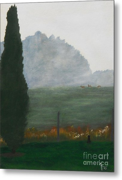 In The Morning Mist Metal Print by Heather Chandler