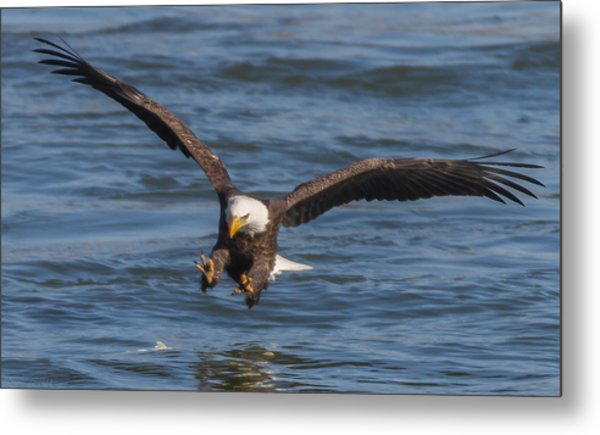 Incoming  Metal Print by Glenn Lawrence