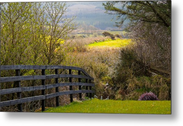 Irish Countryside In Spring Metal Print