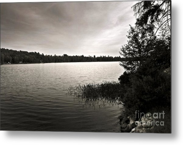 Jacob Buck Pond Metal Print