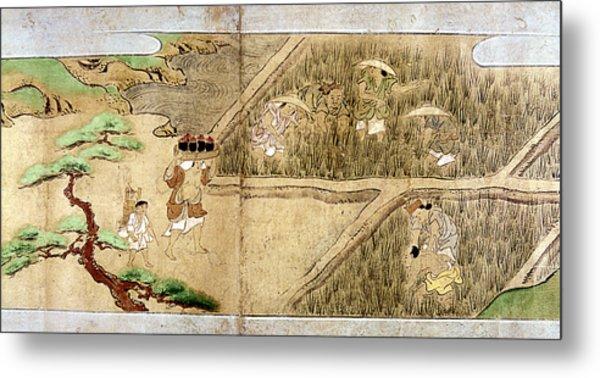 Japan Rice Farming Metal Print