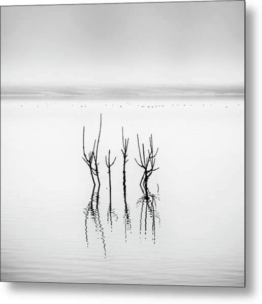 Lake Reflections Metal Print by George Digalakis