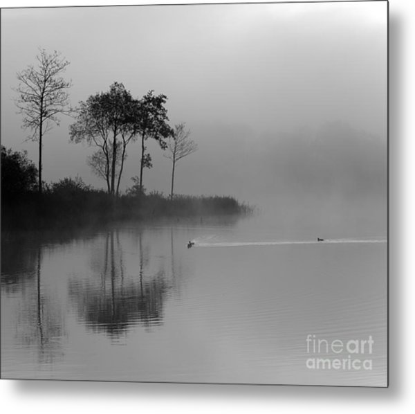 Loch Ard Trees In The Morning Mist Metal Print