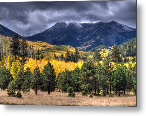 Lockett Meadow Metal Print