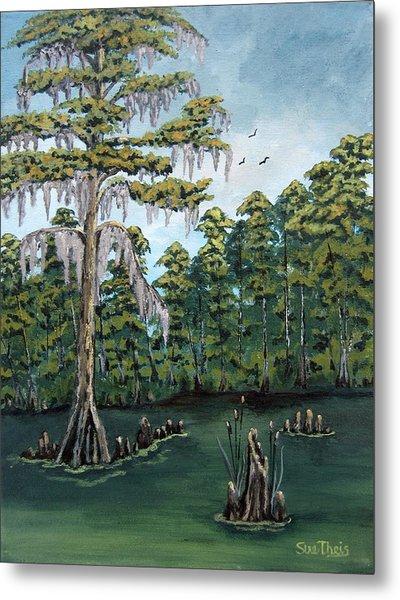 Louisiana Cypress Metal Print