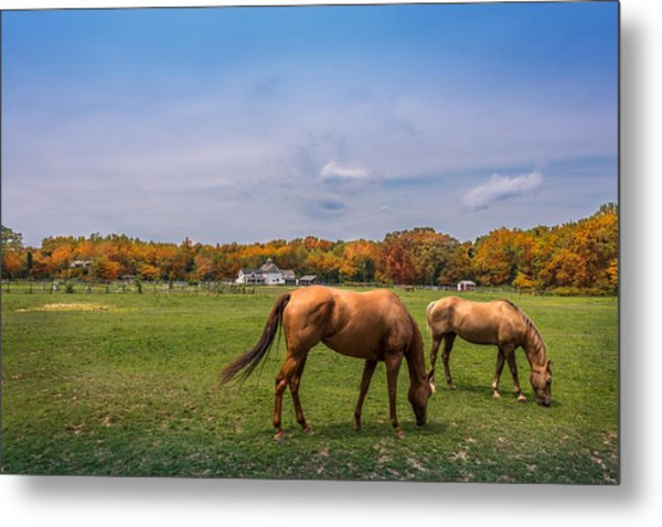 Maryland Pastures Metal Print