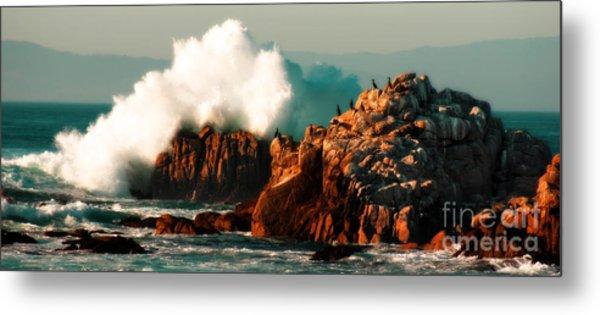 Monterey Landscapes Metal Print