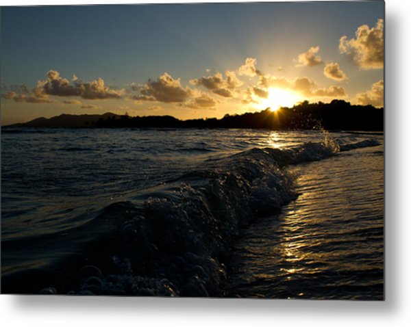 Morning Dip 2 Metal Print