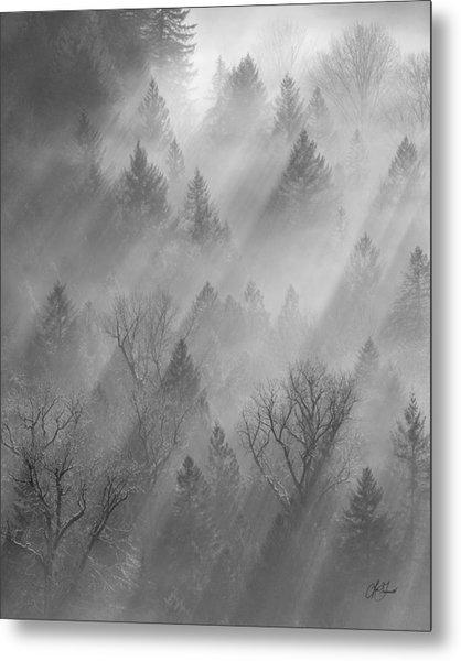 Morning Light -vertical Metal Print