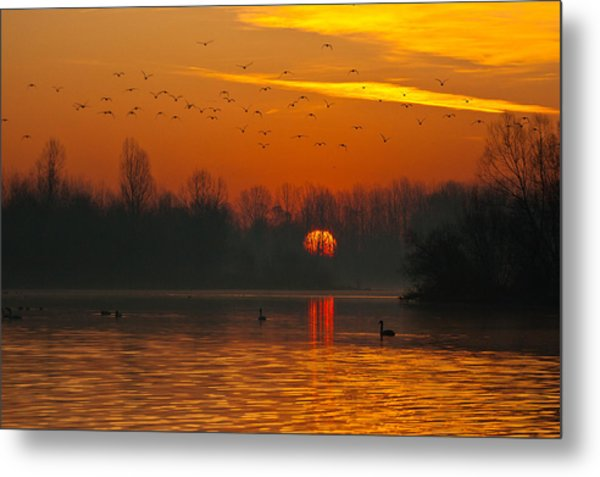 Metal Print featuring the photograph Morning Over River by Davor Zerjav