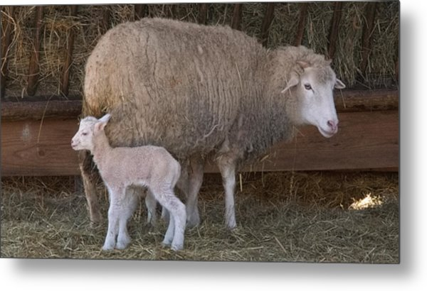 Mother And Child Metal Print by Arthur Warlick