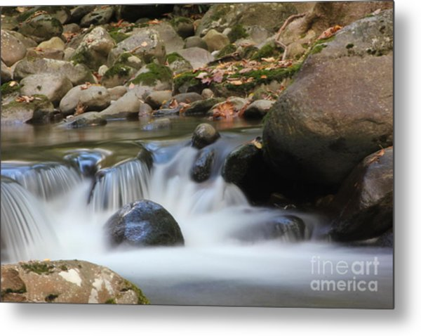 Mountain Mist Metal Print