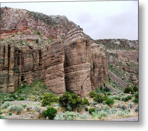 Nevada Desert Metal Print