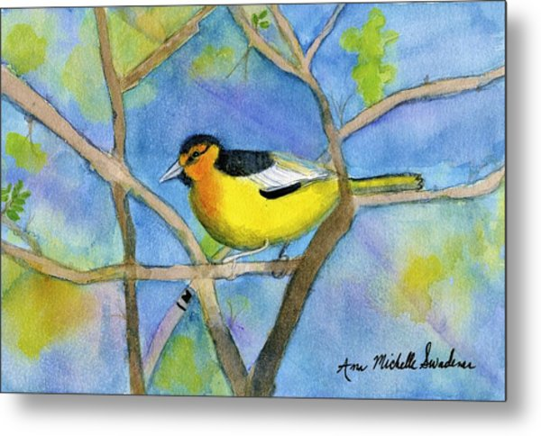 Northern Oriole Metal Print