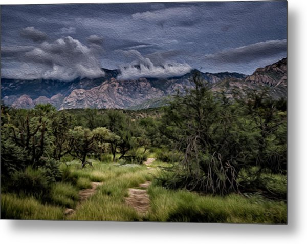Odyssey Into Clouds Oil Metal Print
