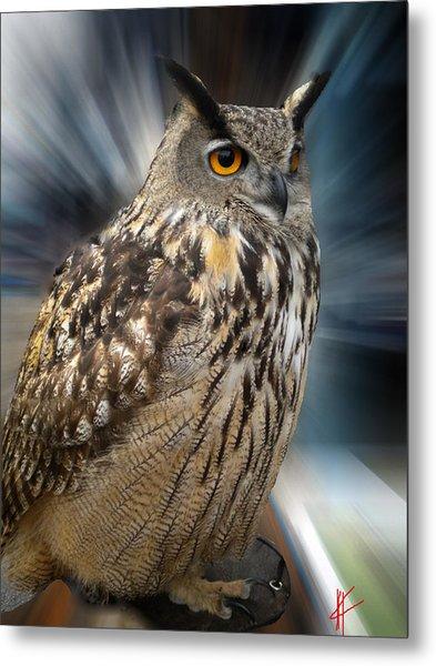 Owl Alba Spain  Metal Print