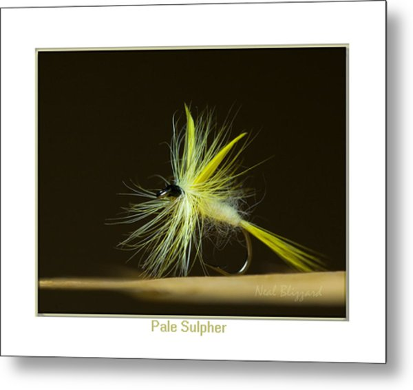 Pale Sulpher Metal Print by Neal Blizzard