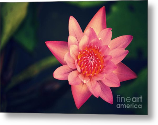Peace Within Metal Print by Vishakha Bhagat