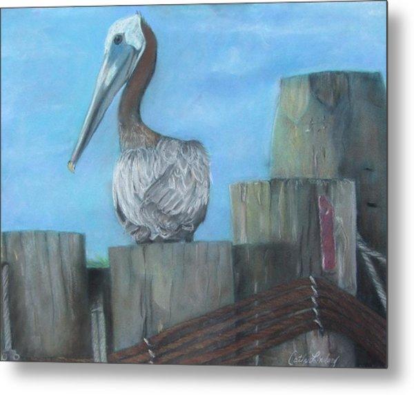 Pelican At Hatteras Ferry Metal Print