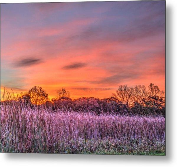 Illinois Prairie Moments Before Sunrise Metal Print