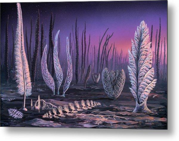 Pre-cambrian Life Forms Metal Print by Richard Bizley