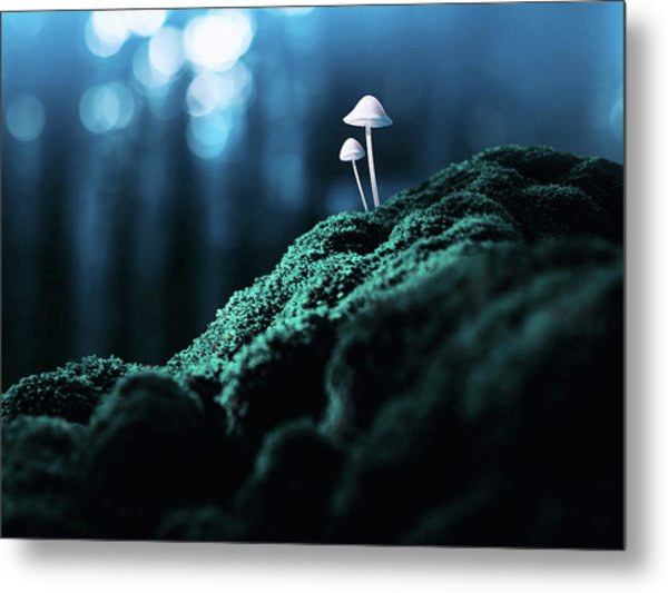 Psychedelic Mushrooms Metal Print by Misha Kaminsky