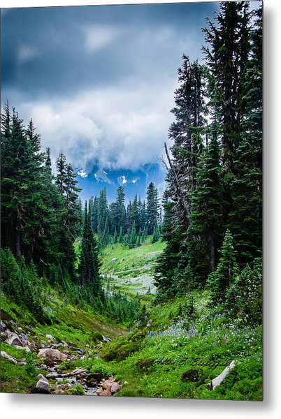 Rainer Glacial Meadow Metal Print