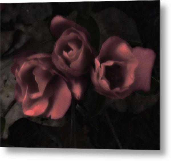 Red Bloom Metal Print