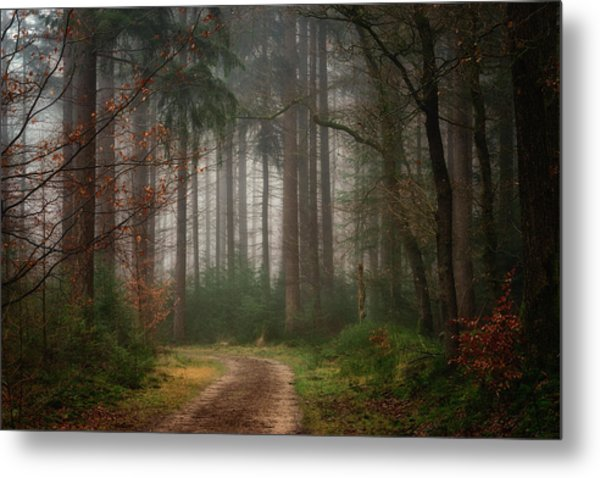 Reveries Metal Print